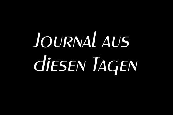 journal aus diesen tagen